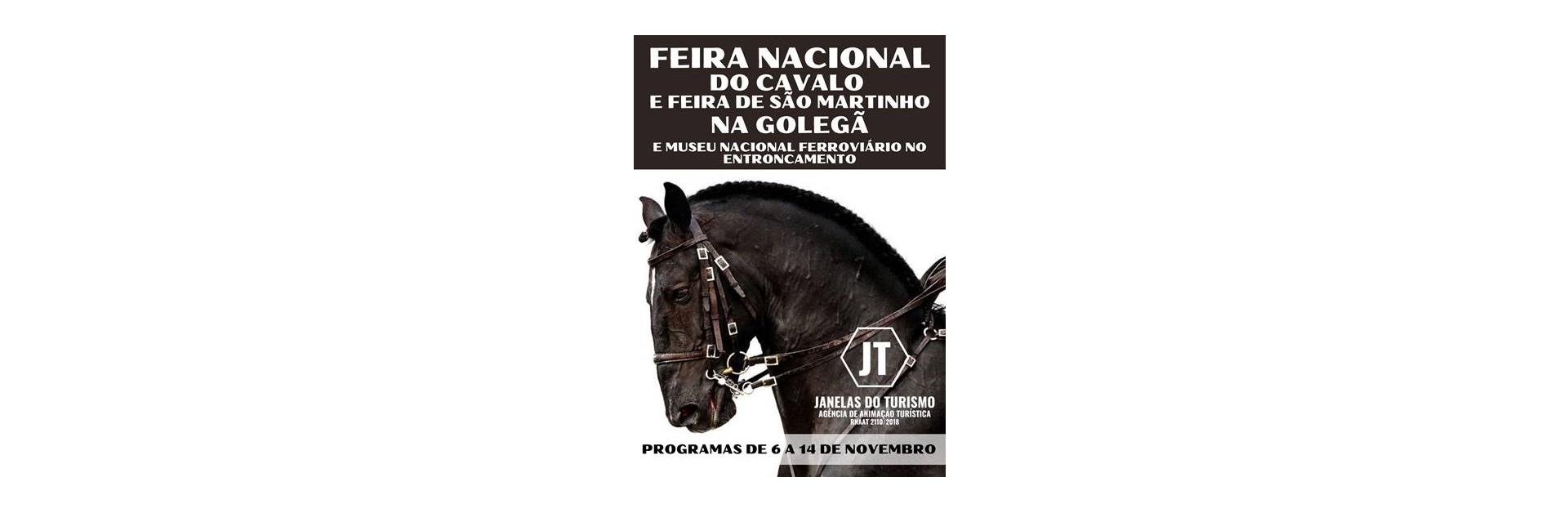 Feira Nacional do Cavalo e Feira de São Martinho na Golegã – De 6 a 14 de Novembro